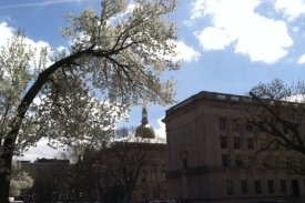 New Jersey State House 2014